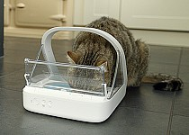cat-eating-surefeed-mircochip-feeder-front