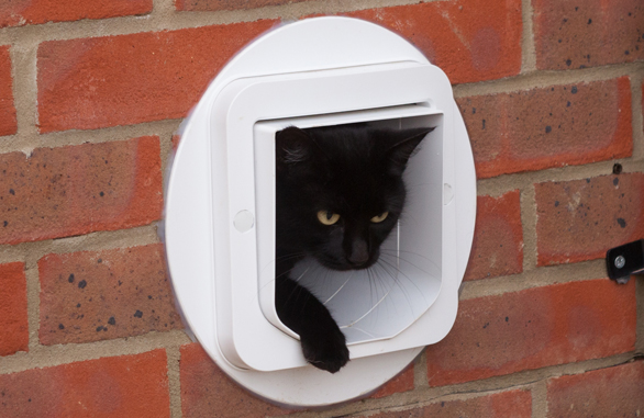 The Sureflap Microchip Cat Flap Keep Unwanted Cats Out