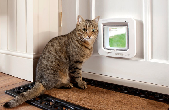 The SureFlap Microchip Cat Door - Keep Unwanted Cats Out!