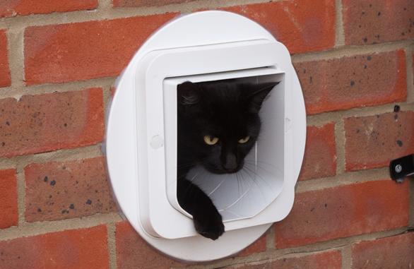 SureFlap DualScan™ Microchip Cat Flap for Multi-cat Homes