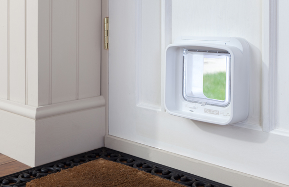 dualscan-cat-flap-in-door