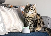 Sure Petcare Hub with cat on sofa