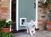 Dog through Microchip Pet Door Connect