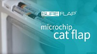 Learning your cat into the SureFlap Microchip Cat Door