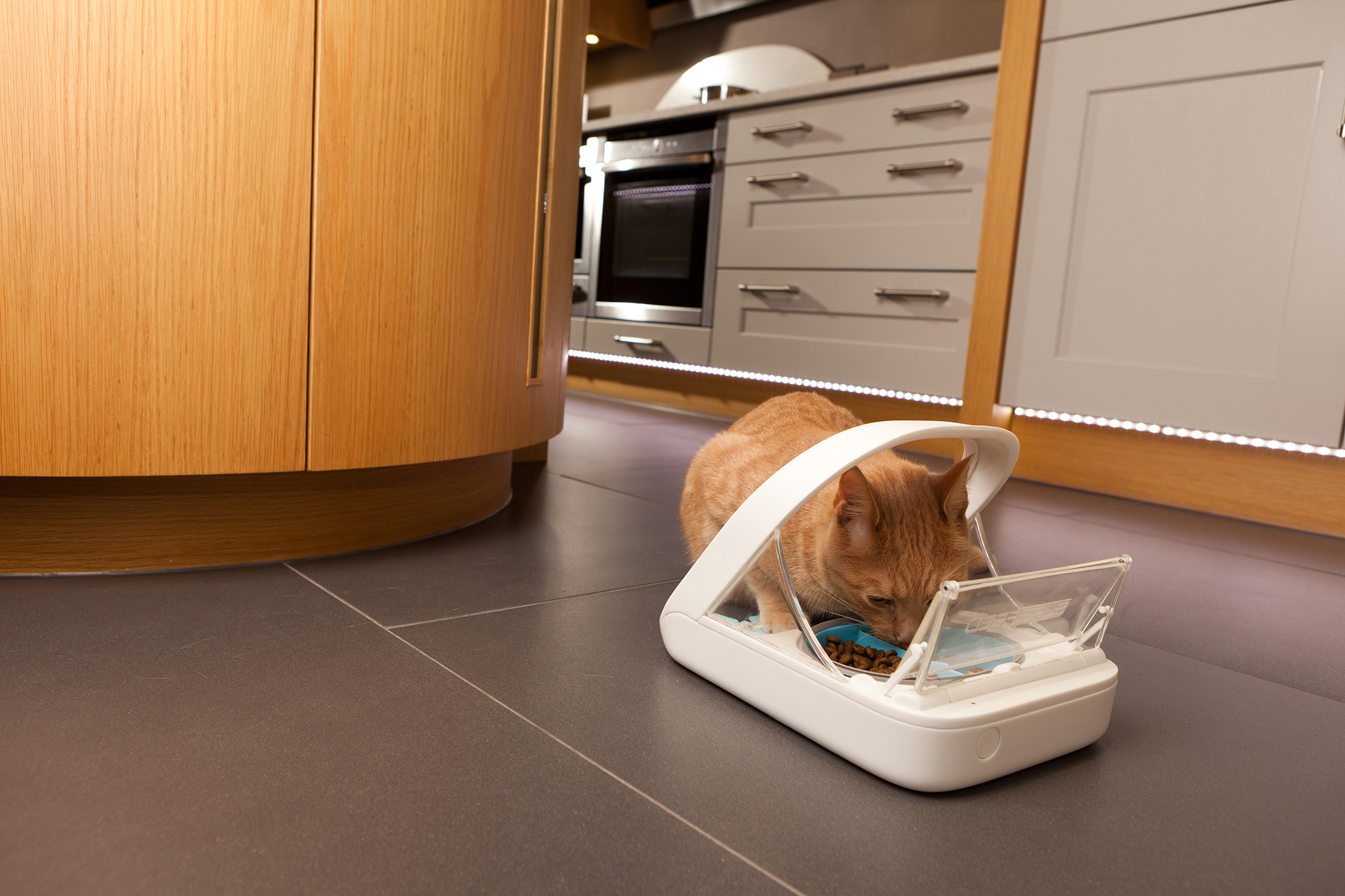 The Surefeed Microchip Pet Feeder From Sure Petcare