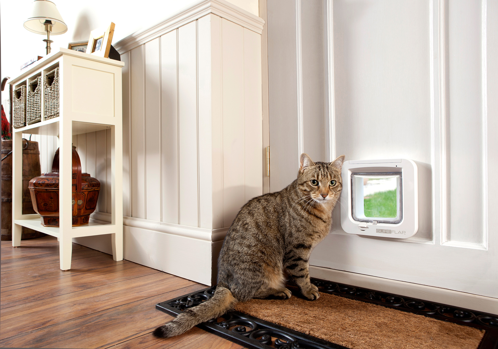 The Sureflap Microchip Cat Door Keep Unwanted Cats Out