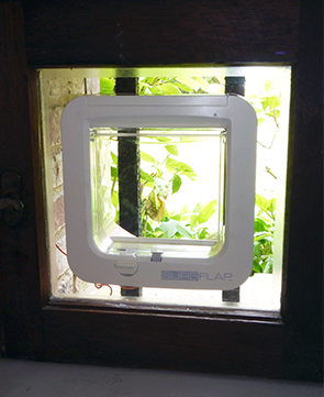 Microchip Cat Flap installed in glass