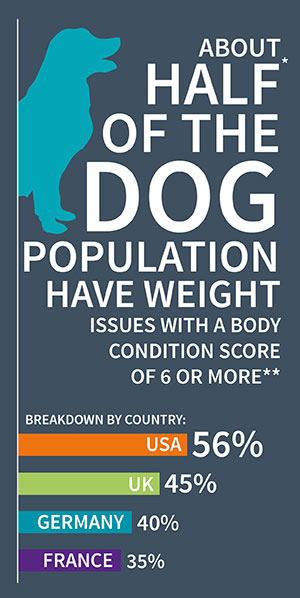 Dog weight infographic 1